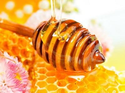 Можно ли употреблять мед