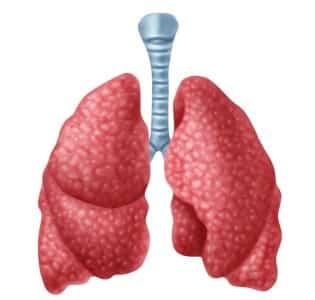 Тиреоїдит щитовидної залози: що це таке, симптоми і лікування » журнал здоров'я iHealth 7