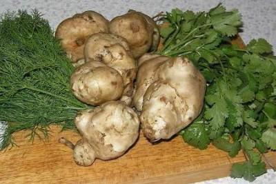 Полезный овощ - земляная груша