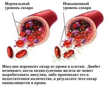 Картинка 2