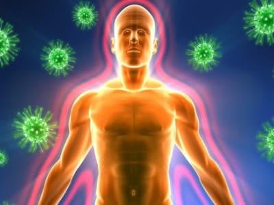 Дисбаланс иммунного аппарата