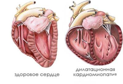 Признакизаболевания во внутренних органах